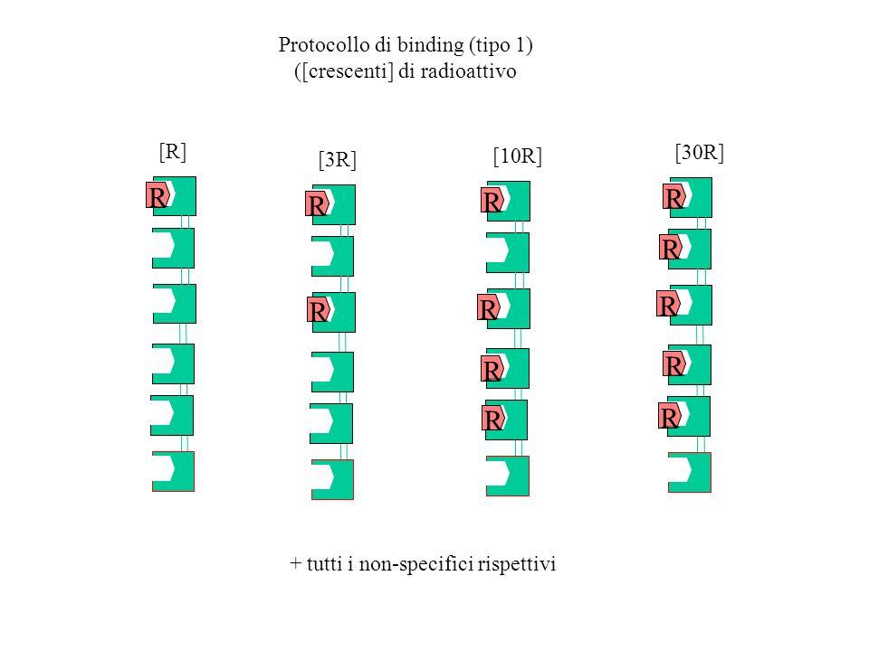 R R R R R Protocollo di binding (tipo 1) ([crescenti] di radioattivo